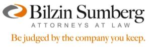 Blizin_Sumberg_logo